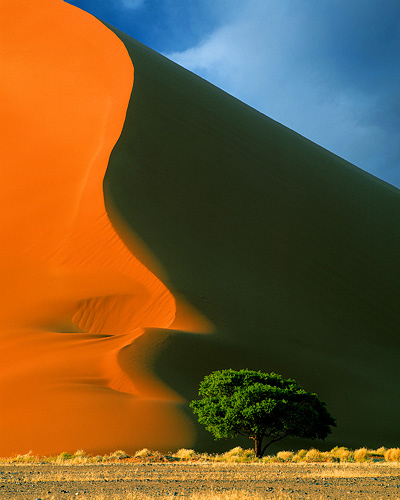 sand dune in Namibia