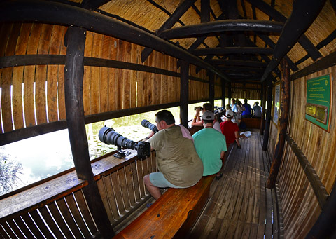 Lake Panic Hide Kruger Park