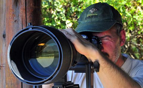Nikon 600mm f4 lens in Kruger Park
