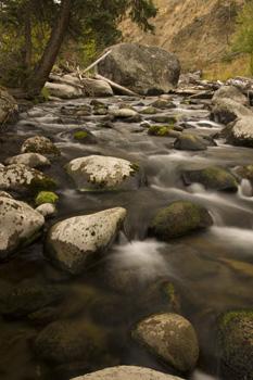 Tower Creek, Yellowstone NP, WYO USA in fall