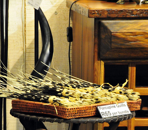 bundle of porcupine quills