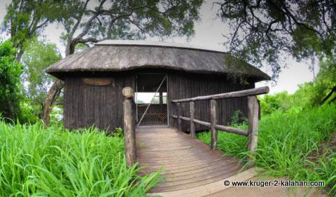 Ratel Pan Hide Kruger Park