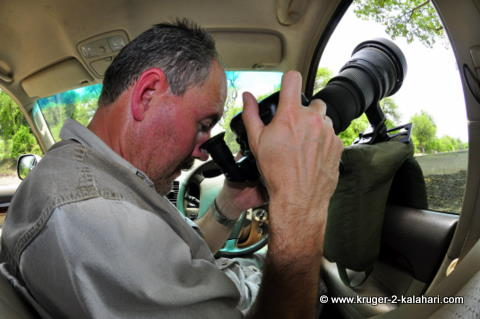 Using the right-angle viewfinder at Pafuri
