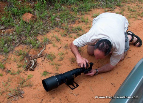 Using right-angle viewfinder for low perspective