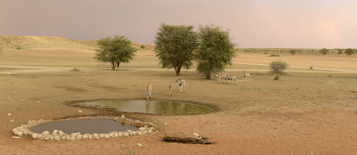 Rainbow and eland at Samevloeiing waterhole