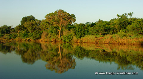 Shingwedzi River near Bateleur bushcamp