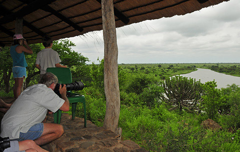 Photographing from Picnic Sites in the Kruger park