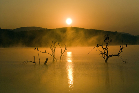 Sunrise over Lake Mankwe, Pilanesberg