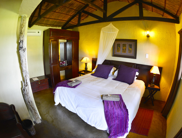 Safari Purple