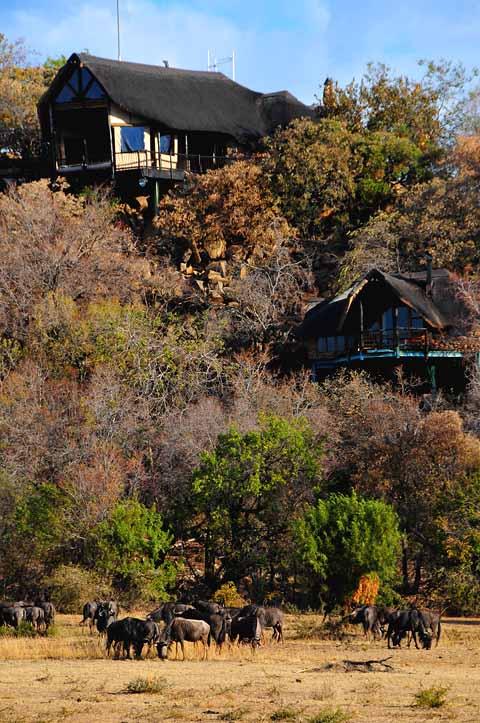 view of Tshukudu Lodge Pilanesberg from the waterhole