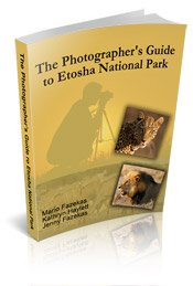 Photographer's Guide to Etosha National Page