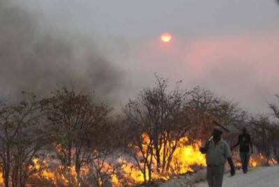 Park employees fight fire