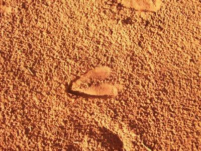 Mokala red sand